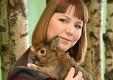 История кролика Роджера