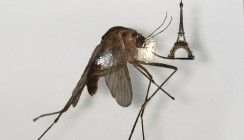 Эйфелева башня на усике комара