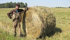 На пути к экохозяйству