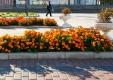 Чиновники Калуги украсили город цветами