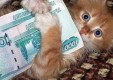 Прожиточный минимум для калужан уменьшен на 148 рублей