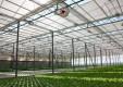 Заложен первый камень тепличного комплекса Агро-Инвест
