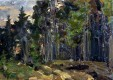 В Калуге откроется выставка работ Михаила Шевченко