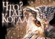 В Калуге состоялся межрегиональный турнир по игре «Что? Где? Когда?» при поддержке Калужского отделения Сбербанка