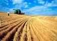 Среднерусский банк сообщает о новом продукте Сбербанка «Готовое решение для сельского хозяйства»