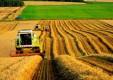 Среднерусский банк: сельхозпроизводители в Рязани выбирают «Готовое решение для сельского хозяйства»