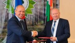 В Калужской области подписано соглашение о защите прав лесопромышленников