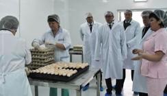 «Птицефабрика Калужская» будет выращивать 27 миллионов цыплят в год