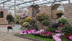 В «Галантусе» открылась ежегодная цветочная выставка