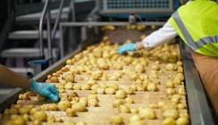 ВТБ финансирует поставщика картофеля для BURGER KING и McDonald's