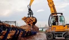 ВТБ поддерживает башкирских лесопромышленников