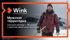 23 февраля на Wink — мужская территория