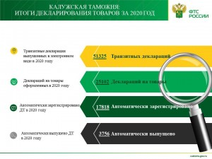 ДТ за 2020 год_265427